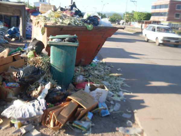 La basura acumulada atrajo cantidad de insectos, roedores y canes vagabundos. (Foto: El Chaqueño)