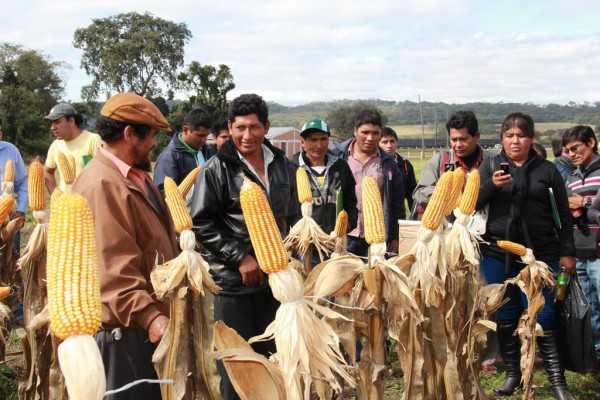Productores del Chaco en El Algarrobal. (Foto: El Chaqueño)