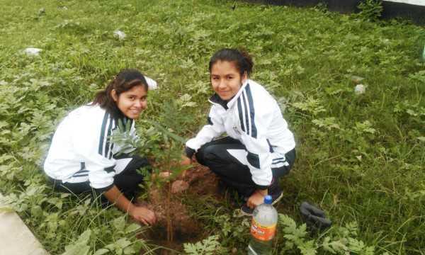 Estudiantes del Liceo Gran Chaco, colocan plantines en jardineras de Av. Bolivia. (Foto: El Chaqueño)