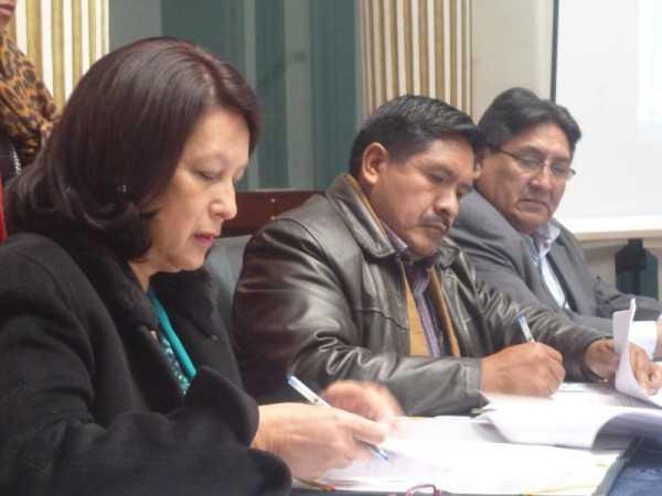 El Viceministro valoró la voluntad política de Colombia de llegar a ese acuerdo. (Foto: ABI)