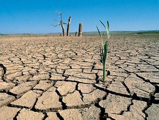 La característica del fenómeno de El Niño es la mala distribución de las precipitaciones. (Foto ilustrativa)
