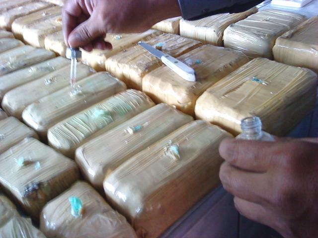POLICÍA ANTIDROGA DECOMISA 148 KILOS DE COCAÍNA EN 11 OPERATIVOS EN SANTA CRUZ