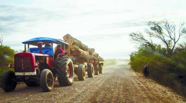La normativa indica que deben emplear madera nativa y cultivada en suelo salteño. (Foto: El Tribuno)