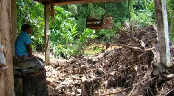 Varias familias viven próximos a la cuenca. (Foto: El tribuno)
