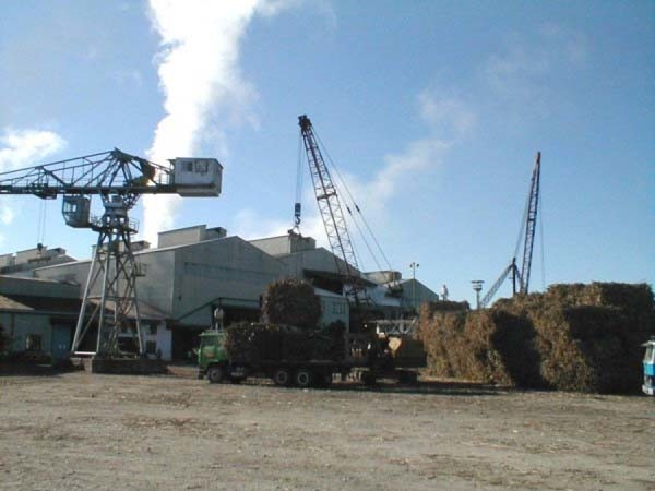 El Ingenio de Bermejo tiene una capacidad de molienda de 4 mil toneladas día. (Foto: internet)