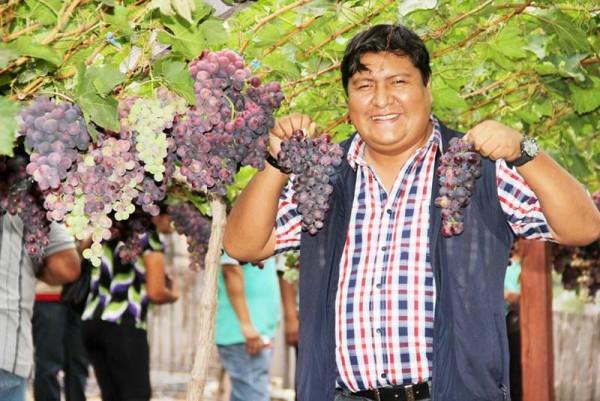 El subgobernador en el viñedo de El Simbolar. (Foto: Agencias)