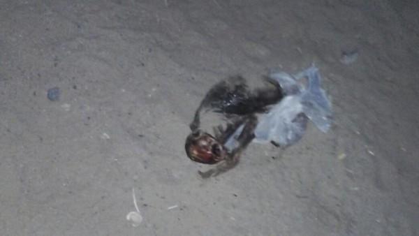 El cuerpo encontrado en San Carlos. (Foto: FM La Voz San Carlos)