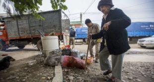 ORÁN: EN FEBRERO ADVIRTIERON QUE EL 30% DE LAS CASAS ESTABAN INFESTADAS CON EL AEDES AEGYPTI