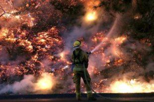 Incendios forestales en Argentina. (Foto: Infobae)