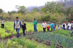 Técnicos y beneficiarios visitan los huertos comunales. (Foto: Agencias)