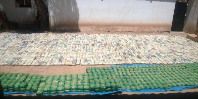 Secuestran 1.626 ladrillos de hojas de coca. (Foto: El Tribuno)