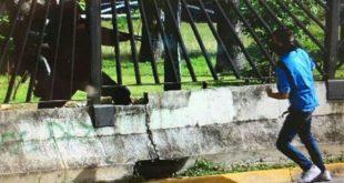 DIFUNDEN VIDEO DEL ASESINATO DE UN JOVEN POR PARTE DE LAS FUERZAS CHAVISTAS