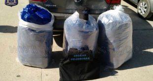 NORTE SALTEÑO: POLICÍA SECUESTRA 60 KILOS DE HOJAS DE COCA