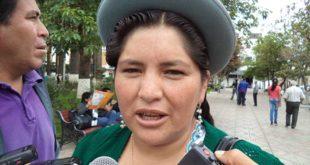 LEGISLADORES INSPECCIONARÁN CARRETERA TARIJA-VILLAZÓN