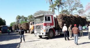 TARIJA: 130 CAMIONES CAÑEROS ESTÁN VARADOS PORQUE EL INGENIO BERMEJO NO FUNCIONA