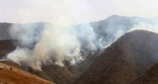 TARIJA: DENUNCIAN QUE GOBERNACIÓN NO ACTIVA LEY PARA AYUDAR A AFECTADOS POR INCENDIO