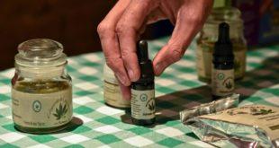 Perú: Congreso aprueba ley que permite el uso medicinal de la marihuana