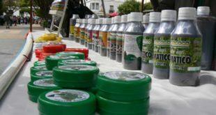 Bolivia expondrá cualidades y bondades de la hoja de coca en Ecuador