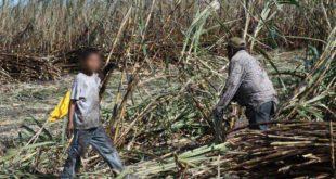 Defensoría rescata a posibles víctimas de explotación laboral en zafra de Bermejo
