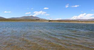 Tarija: Reforestarán cuenca de laguna de Tajzara con 3.500 plantines