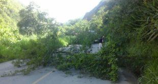 Cocaleros inician con el bloqueo de caminos en Los Yungas
