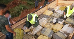 Argentina: Incautan más de 3,5 toneladas de marihuana, en un camión de mudanza